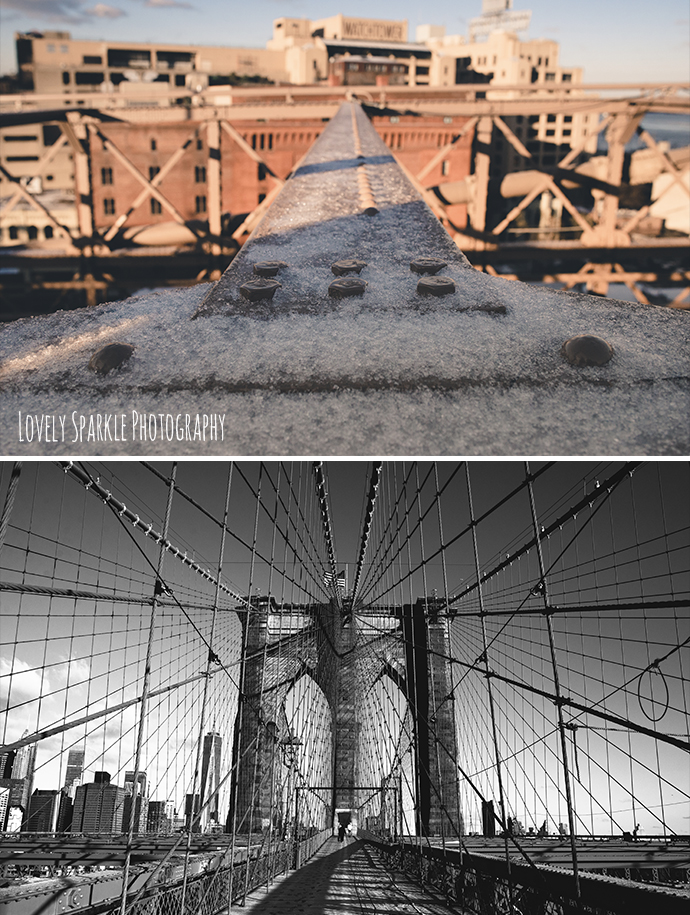 photographe reportage new york